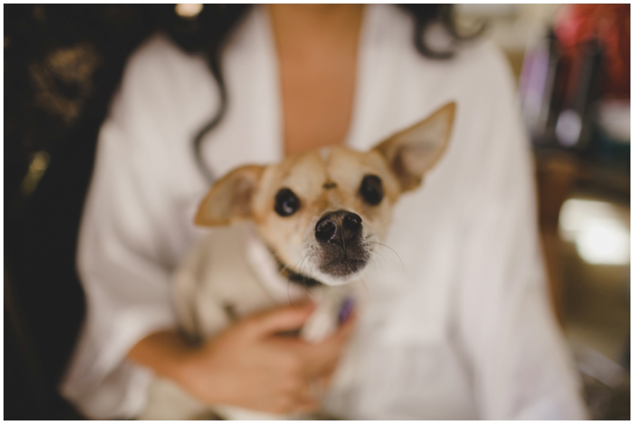 Bride getting Ready photos.  Brides Dog at Wedding.