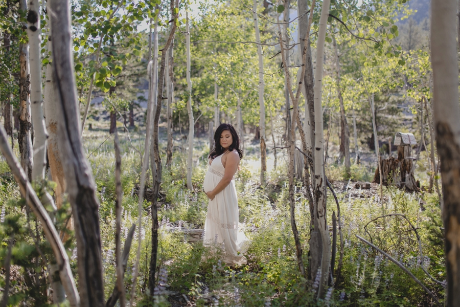 Outdoor locations in Las Vegas for Maternity Photos.  Mount Charleston family portrait pictures.